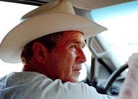 Bushcowboy